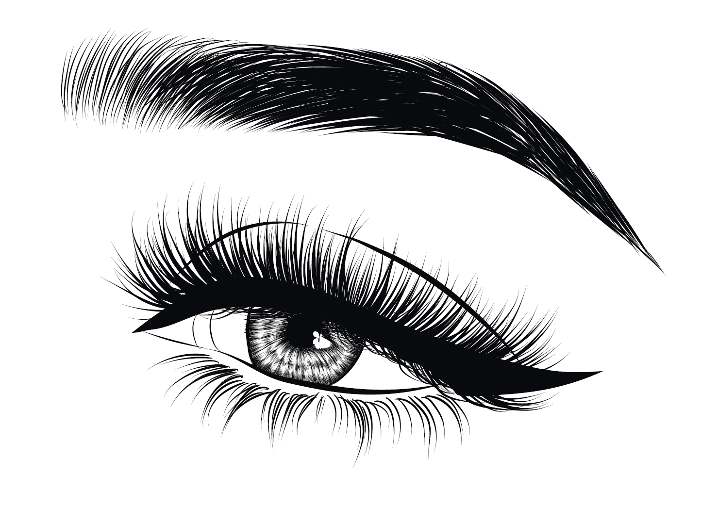 Eyebrow Logo Png - Brows Png & Free Brows.png Transparent Images #51772 - PNGio