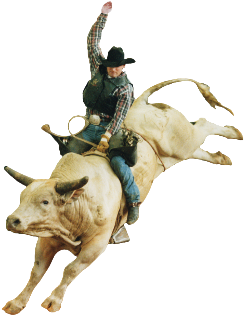 Pbr Bull Riding Png - Bull Riding PNG HD Transparent Bull Riding HD.PNG Images. | PlusPNG