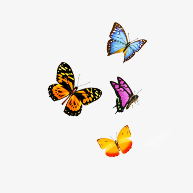 Butterfly Png Fly & Free Butterfly Fly png Transparent Images #9852