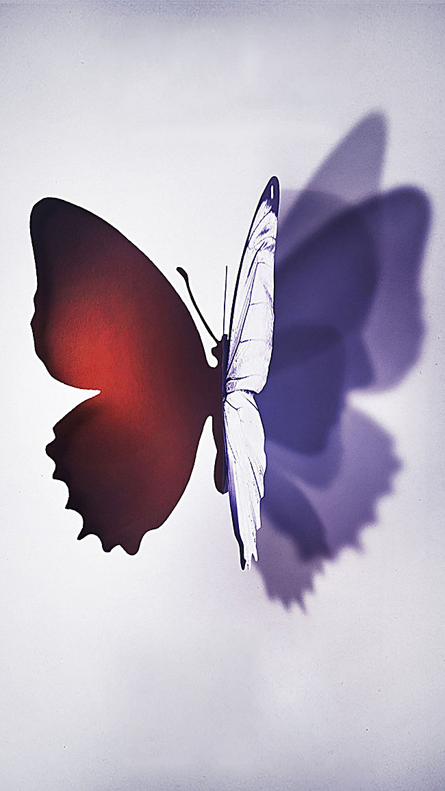 Free Butterfly Png For Commerical Use - Butterfly H5 Background, Butterfly, Art, Literature And Art ...