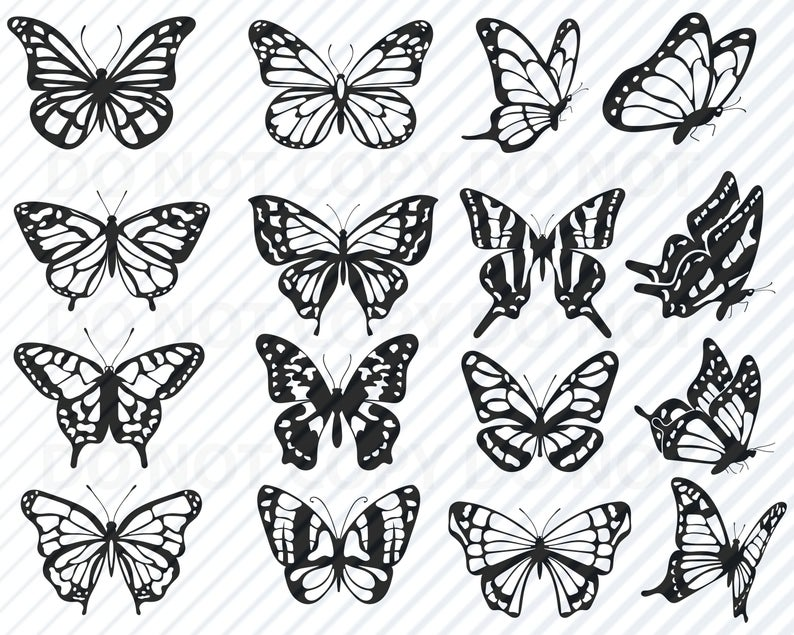 Butterfly Vector - Butterfly SVG Files For cricut Bundle Monarch Butterfly Vector | PNGio