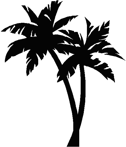 California Palm Tree Coloring Pages Pa 1212684 Png Images Pngio