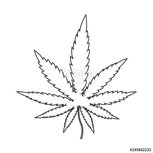 Weed Leaf Transparent Free Weed Leaf Transparent Png Transparent Images 40606 Pngio