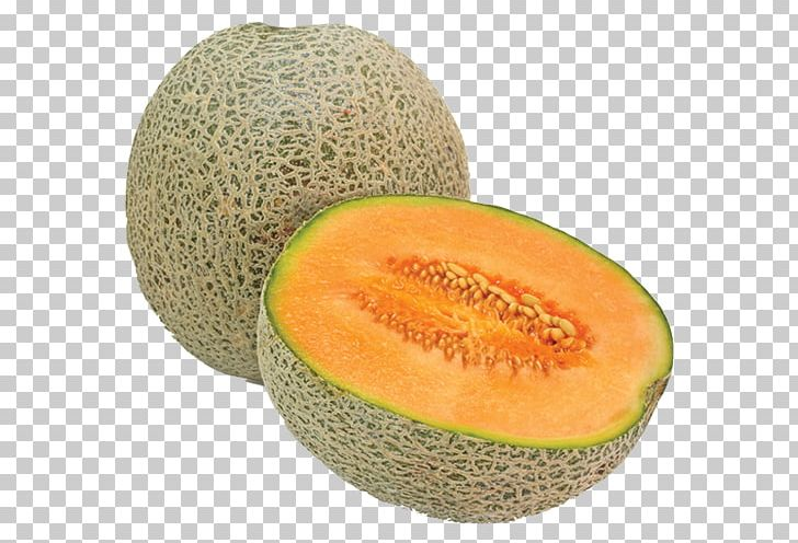 Gourd Fruit Png - Cantaloupe Watermelon Dried Fruit PNG, Clipart, Banana, Cantaloupe ...