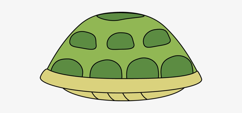 Tortoise Shell Png - Cartoon Tortoise Shell Image - Turtle PNG Image | Transparent PNG ...