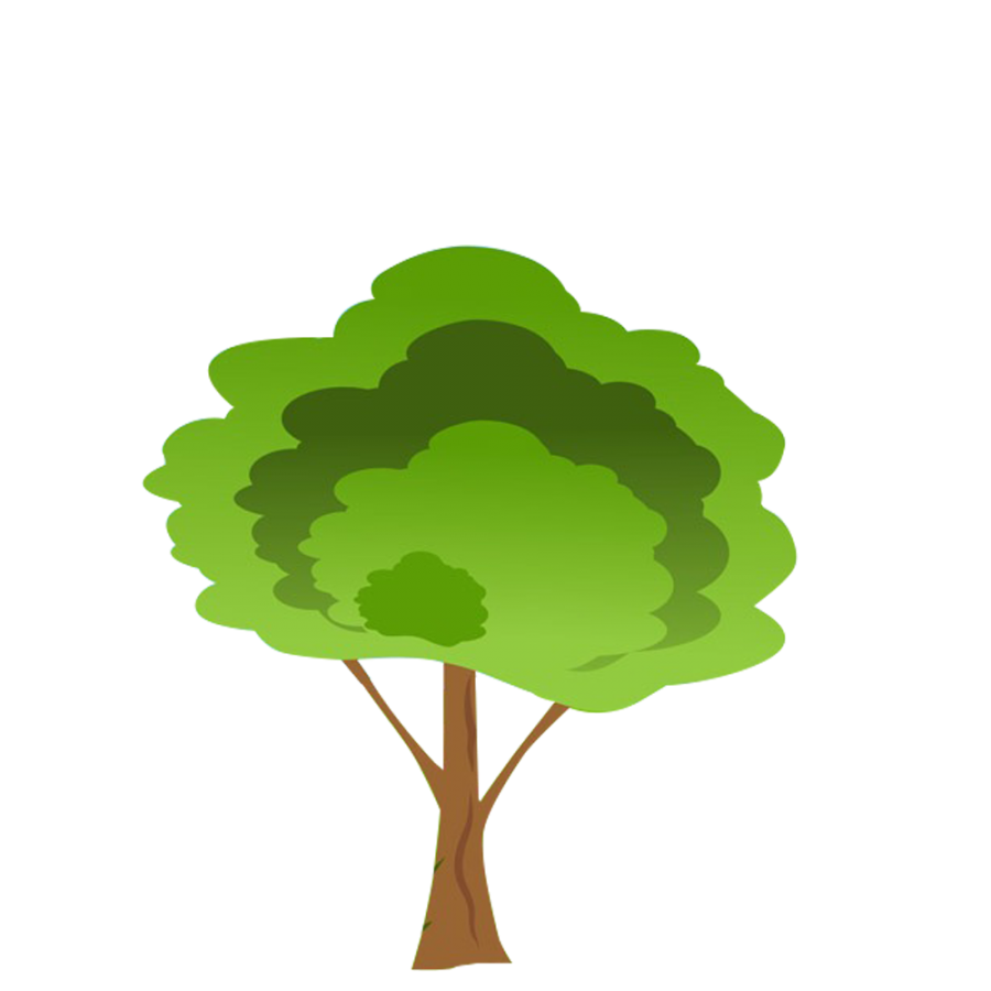 Cartoon Tree Png Free Cartoon Tree Png Transparent Images 28437 Pngio Seeking more png image palm tree clip art png,palm tree emoji png,palm tree png? cartoon tree png transparent images