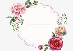 Peony Border Background Png - Cartoon Watercolor Painted Peony Flower Background Border PNG ...