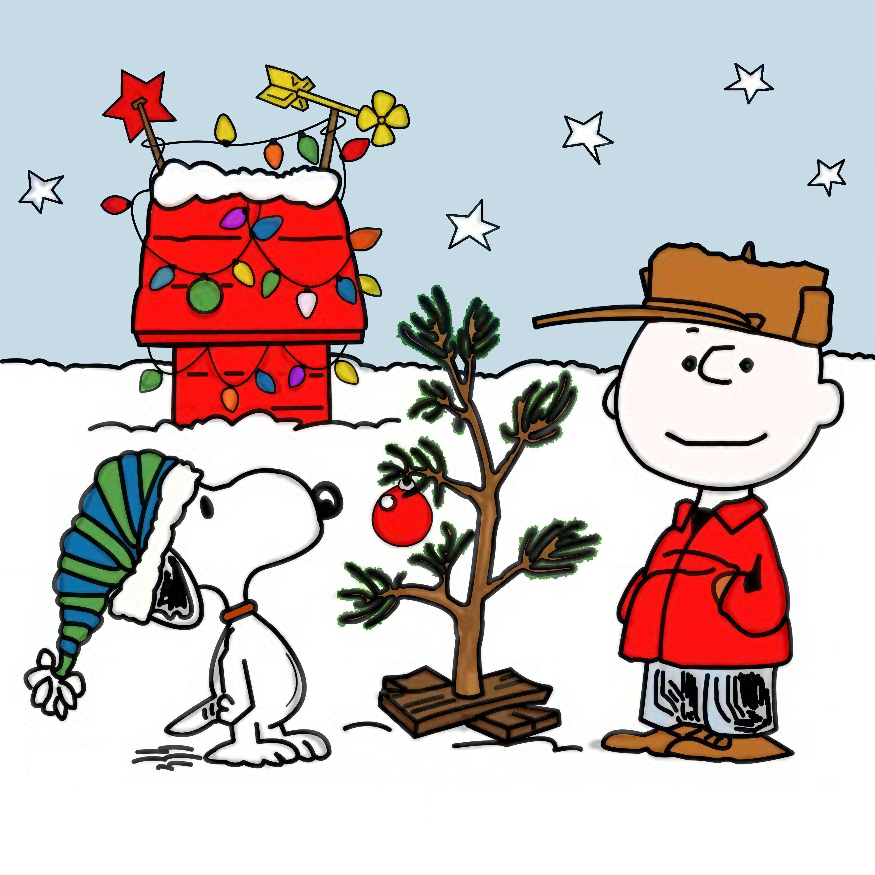 Charlie Brown Christmas Tree Wallpapers 875178 Png Images Pngio