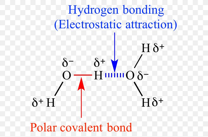 Chemical Polarity Png - Chemical Polarity Organic Chemistry Molecule Covalent Bond, PNG ...
