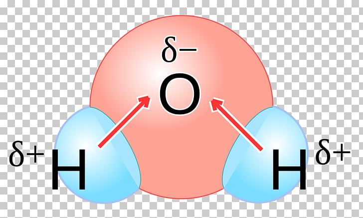 Chemical Polarity Png - Chemical polarity Water Molecule Kekutuban Chemistry, water PNG ...