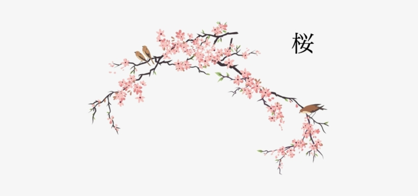 Japanese Cherry Blossom Tree Drawing Png Free Japanese Cherry Blossom Tree Drawing Png Transparent Images 90761 Pngio