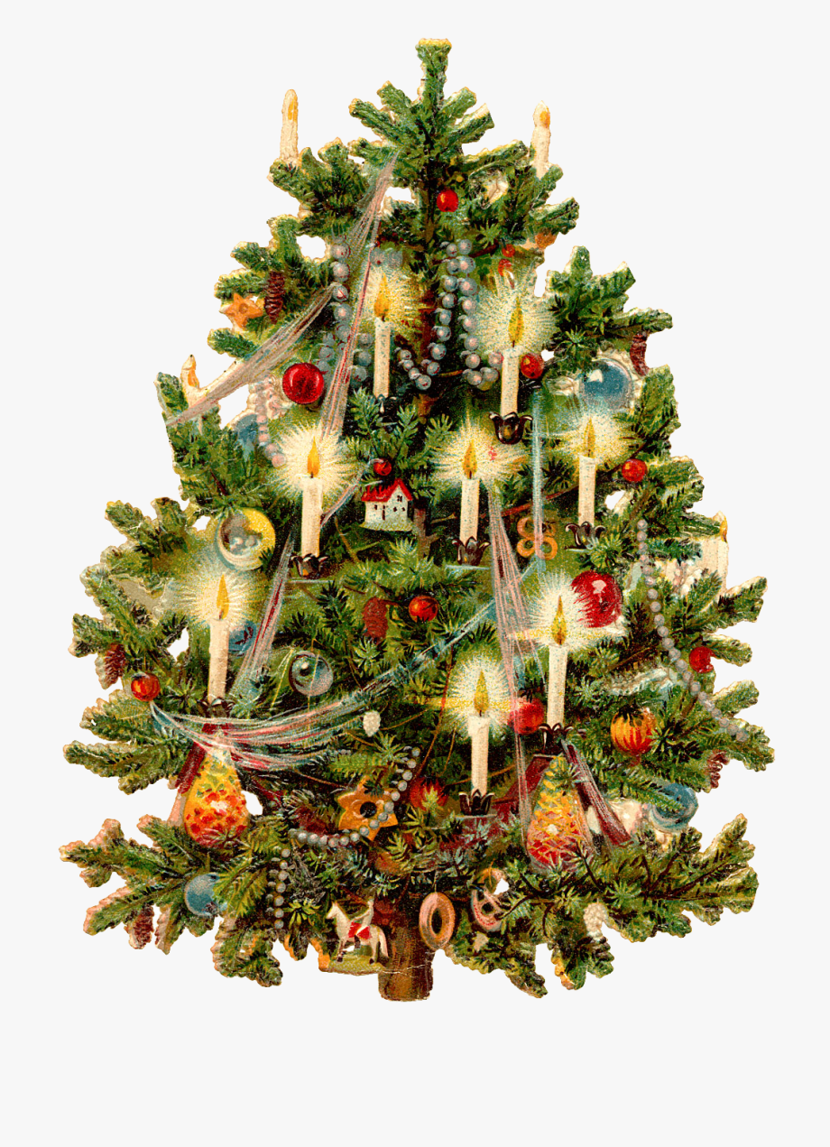 Vintage Christmas Tree Png Free Vintage Christmas Tree Png Transparent Images 103841 Pngio