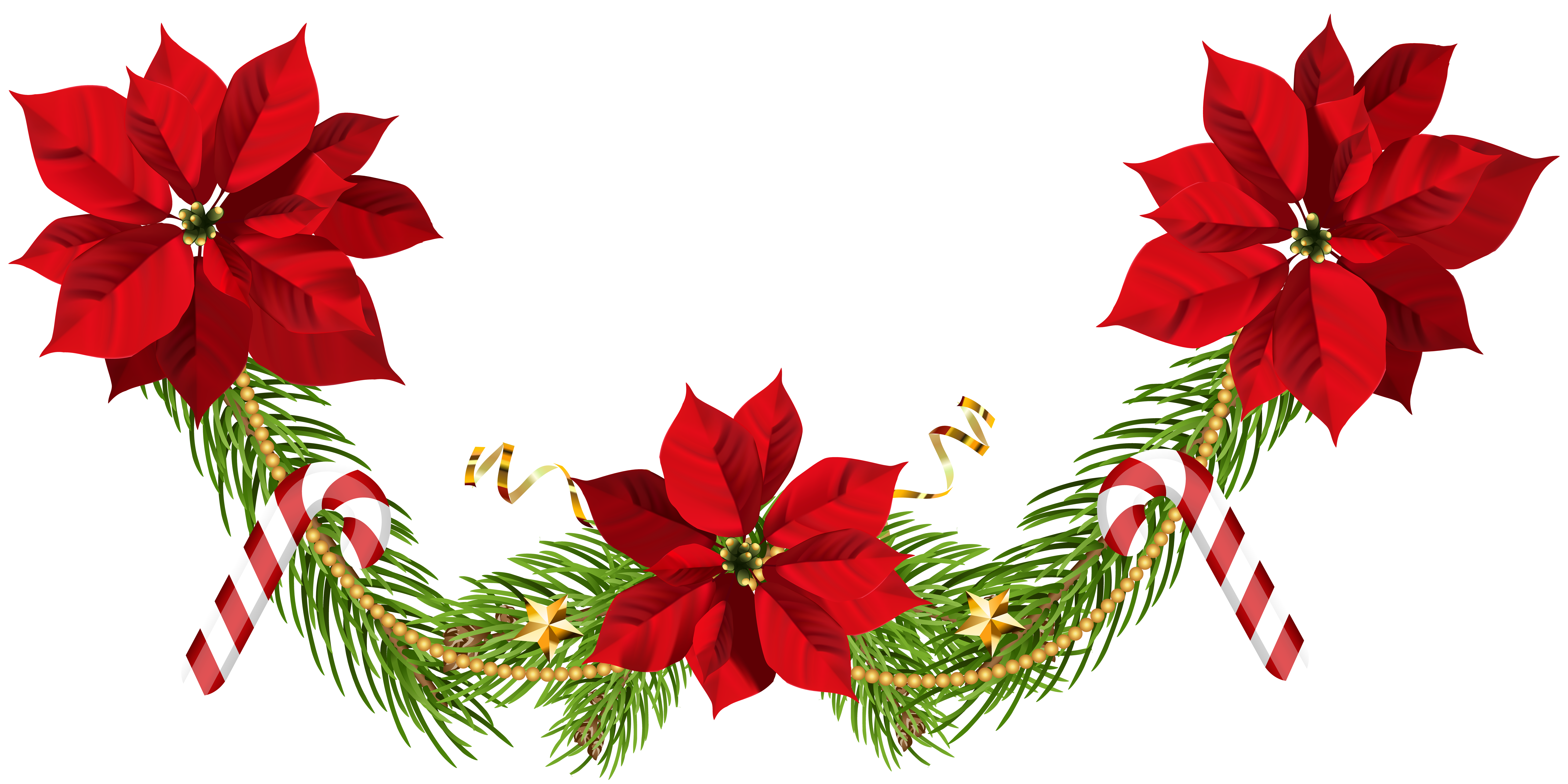 Poinsettia Garland Png - Christmas Poinsettias Garland Clip Art PNG Image | Gallery ...