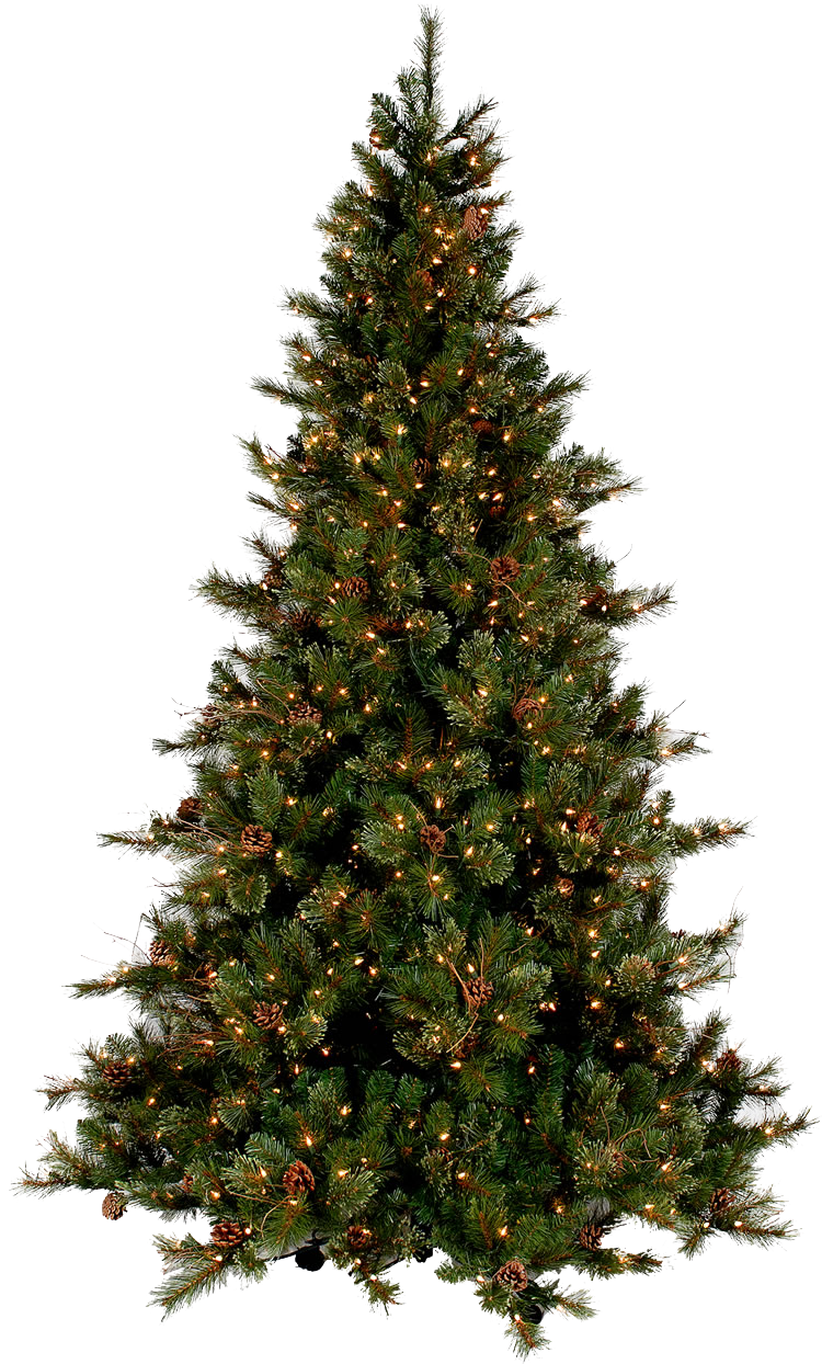 Christmas Tree Png & Christmas Tree Png Transparent Images #2849 - PNGio