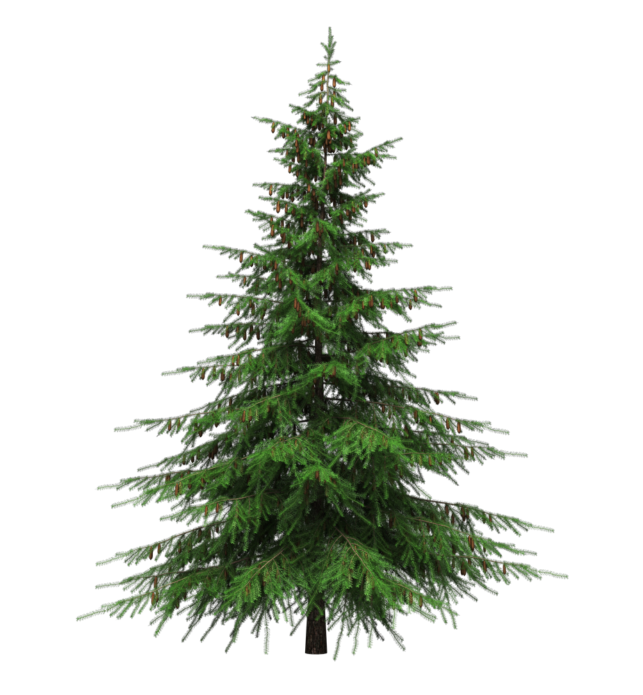 Christmas Tinsel Transparent.Tree Png Fancy Free Tree Fancy Png Transparent Images