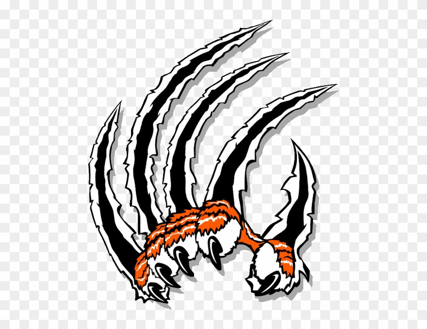 Tiger Claw Scratch Png - Claw Clip Art - Tiger Claw Clipart - Png Download (#1984839 ...