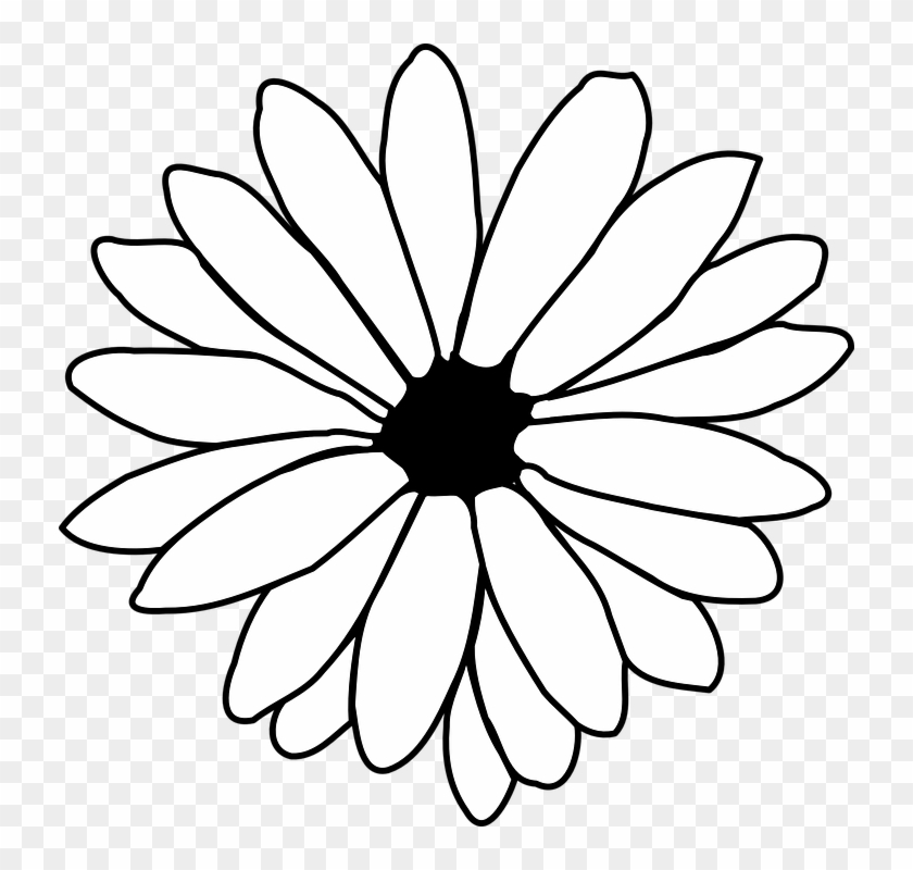 Png Black And White Flower Transparent Images 8091 Pngio