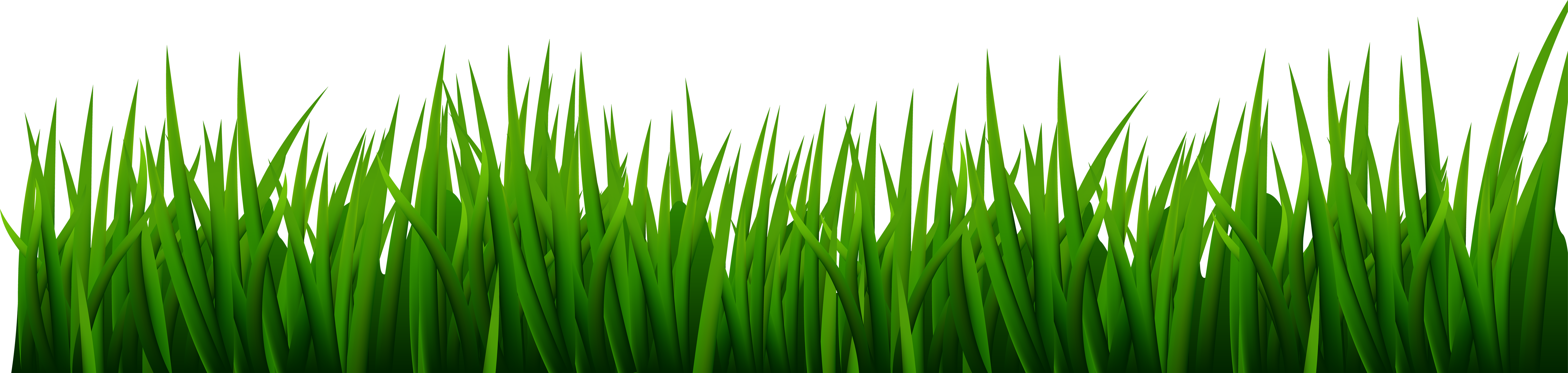 Forage Png - Clipart grass forage, Clipart grass forage Transparent FREE for ...