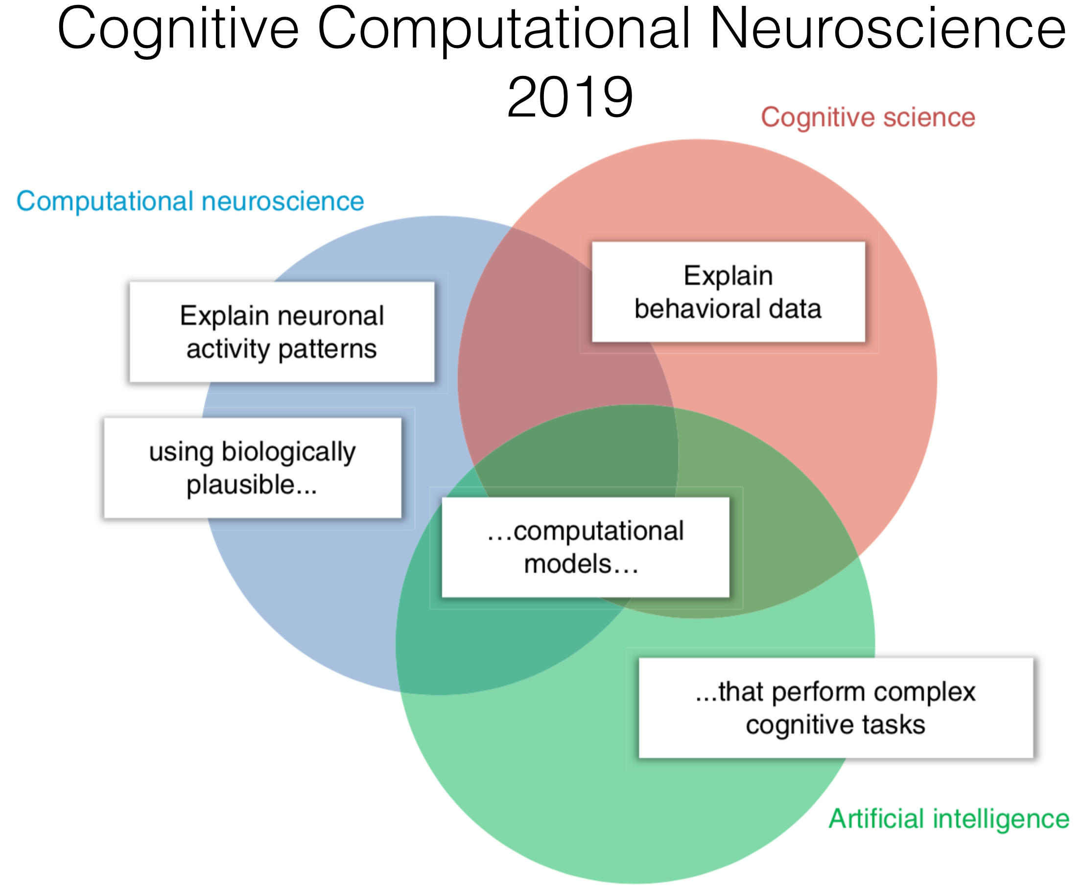 Computational Neuroscience Png - Cognitive Computational Neuroscience 2019 - A Mini-Report - Rob's ...