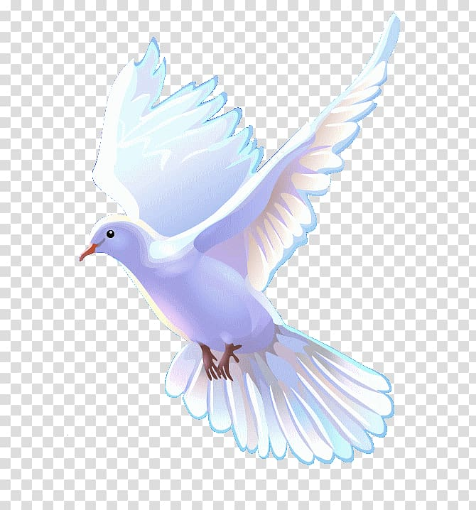 Colombe Png - Colombe Sheet Music Lyrics Choir, doves transparent background PNG ...
