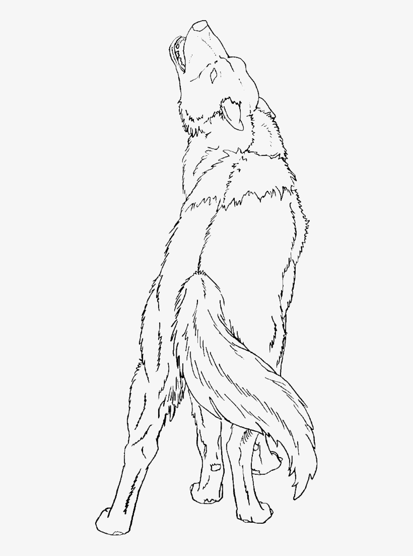 Wolf Coloring Pages For Adults Png - Coloring Howling Pages Wolf Silhouettes - Transparent Wolf ...