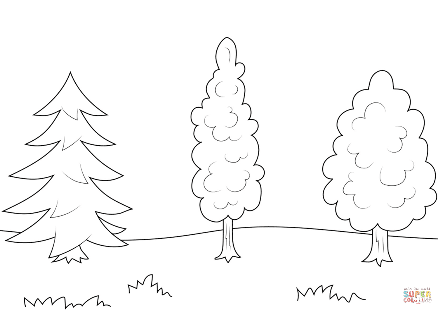 Evergreen Coloring Pages Png Free Evergreen Coloring Pages Png Transparent Images 73100 Pngio