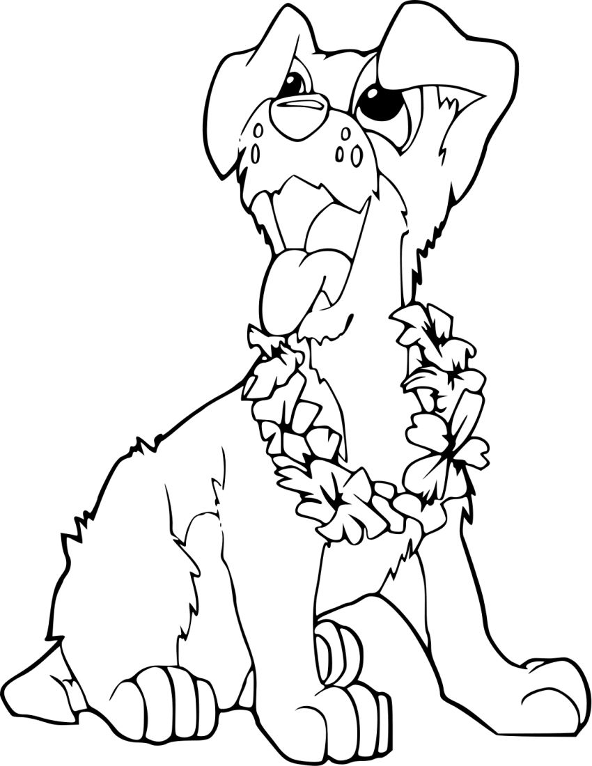 Animal Coloring Page Png - Coloring Png & Free Coloring.png Transparent Images #10233 - PNGio