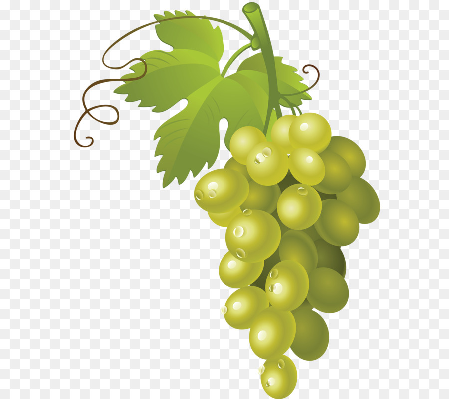 Bunch Of Grapes Png Free Bunch Of Grapes Png Transparent