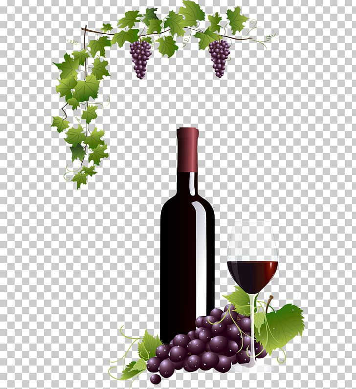 Wine Bottle And Grapes Png - Common Grape Vine Wine Glass Red Wine PNG, Clipart, Barware ...