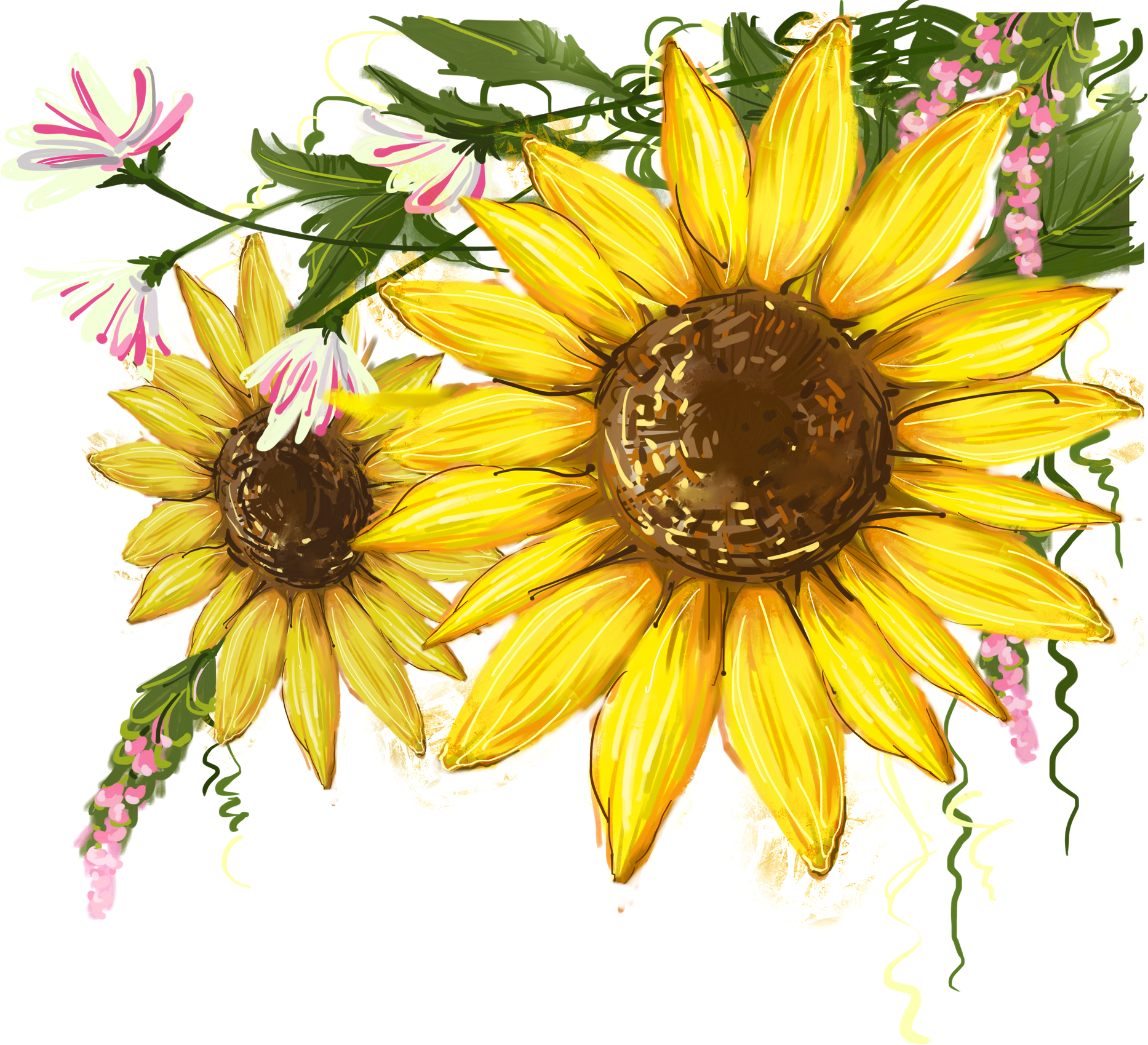 Common Sunflower Png - Common sunflower Clip art Image Watercolor   Sunflower PNG images ...