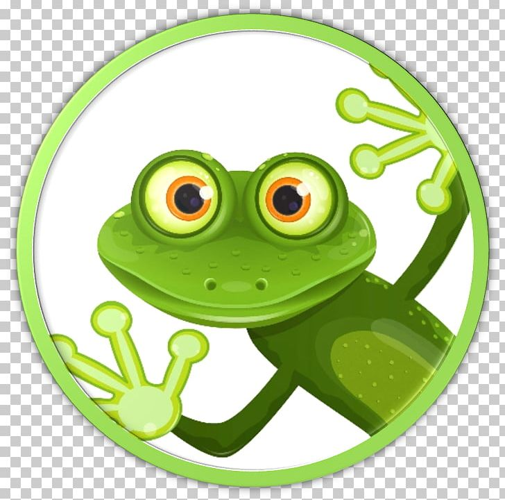 Common Green Frog Png - Common Tree Frog Amphibian PNG, Clipart, Amphibian, Animals ...