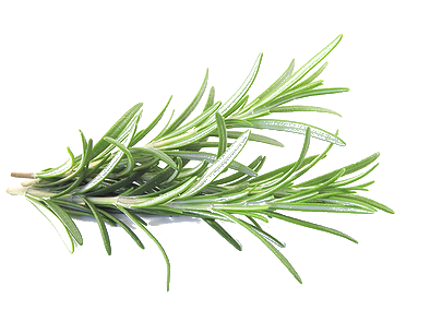 Herb Png - Copyright © 2018 Dry Creek Herb Farm. Powered by Zen Cart. Website Hosting  and Maintenance byMonsterWebz Web Hosting and Web Design .
