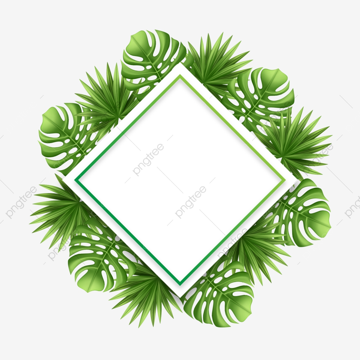 Square Frame Vector Png - Creative Tropical Palm Leaves With Square Frame Vector ...