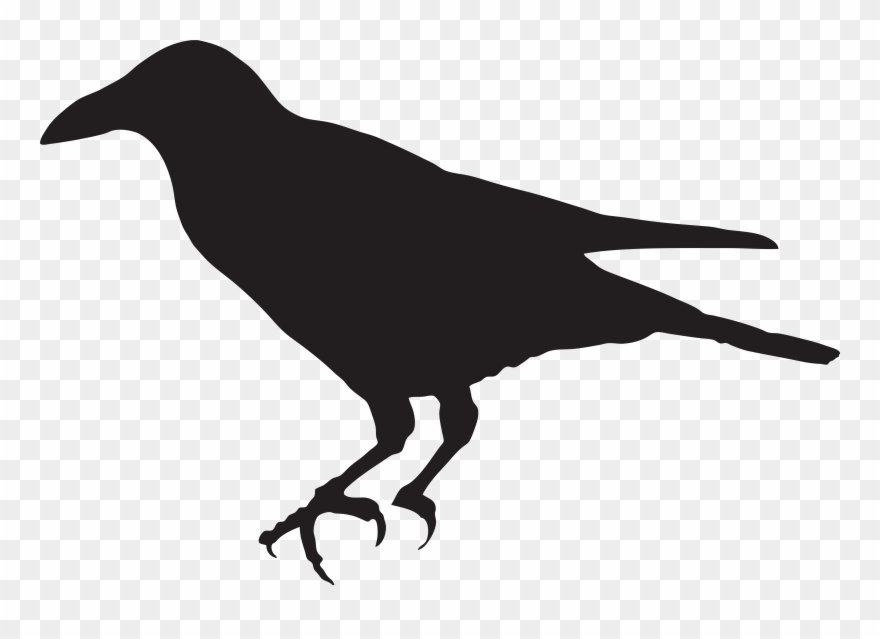 Crow Outline Png - Crow Silhouette Png Clip Art Image - Crow Simple Clip Art ...