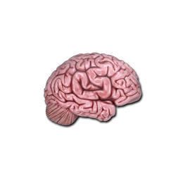 Mind Png - Csgo-community-sticker-2-cs-on-the-mind.png