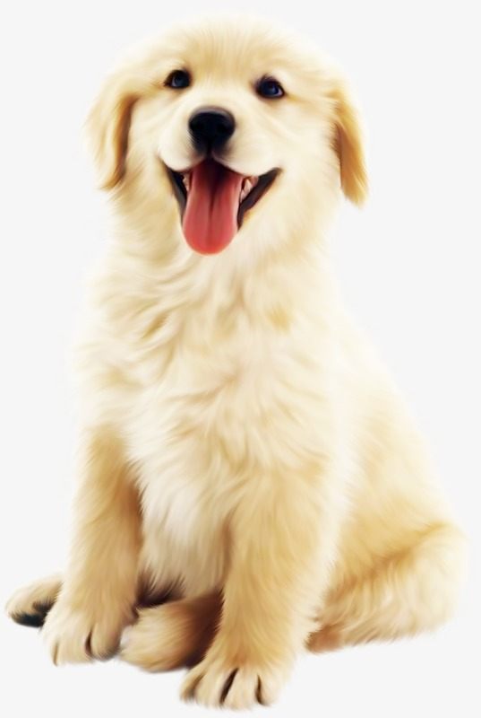 Cute Puppy Easy Png - Cute Dog PNG HD Transparent Cute Dog HD.PNG Images. | PlusPNG
