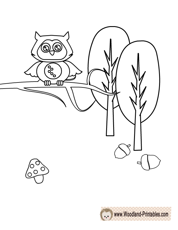 Baby Woodland Animal Coloring Pages Coloring And Drawing