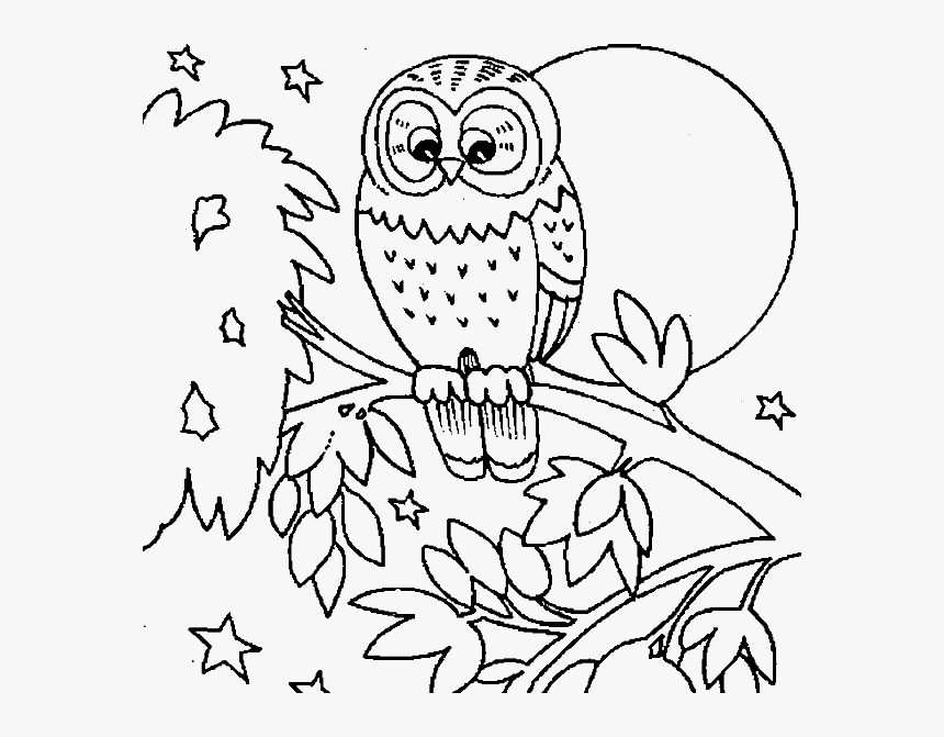 Cute Owl Coloring Pages Png & Free Cute Owl Coloring Pages.png Transparent  Images #144534 - PNGio