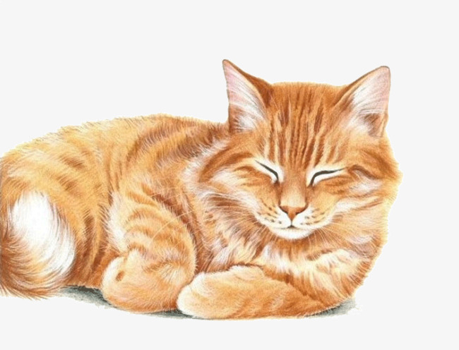 Yellow Cat Png - cute yellow cartoon cat, Cartoon Clipart, Cat Clipart, Cute Clipart PNG  Image and