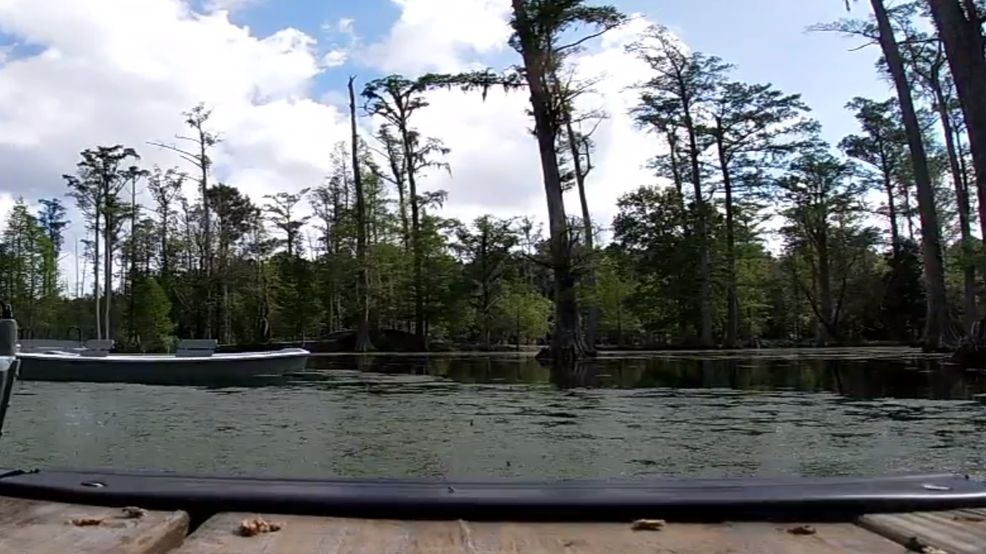 Cypress Gardens Png - Cypress Gardens to reopen after 3.5 year closure | WCIV