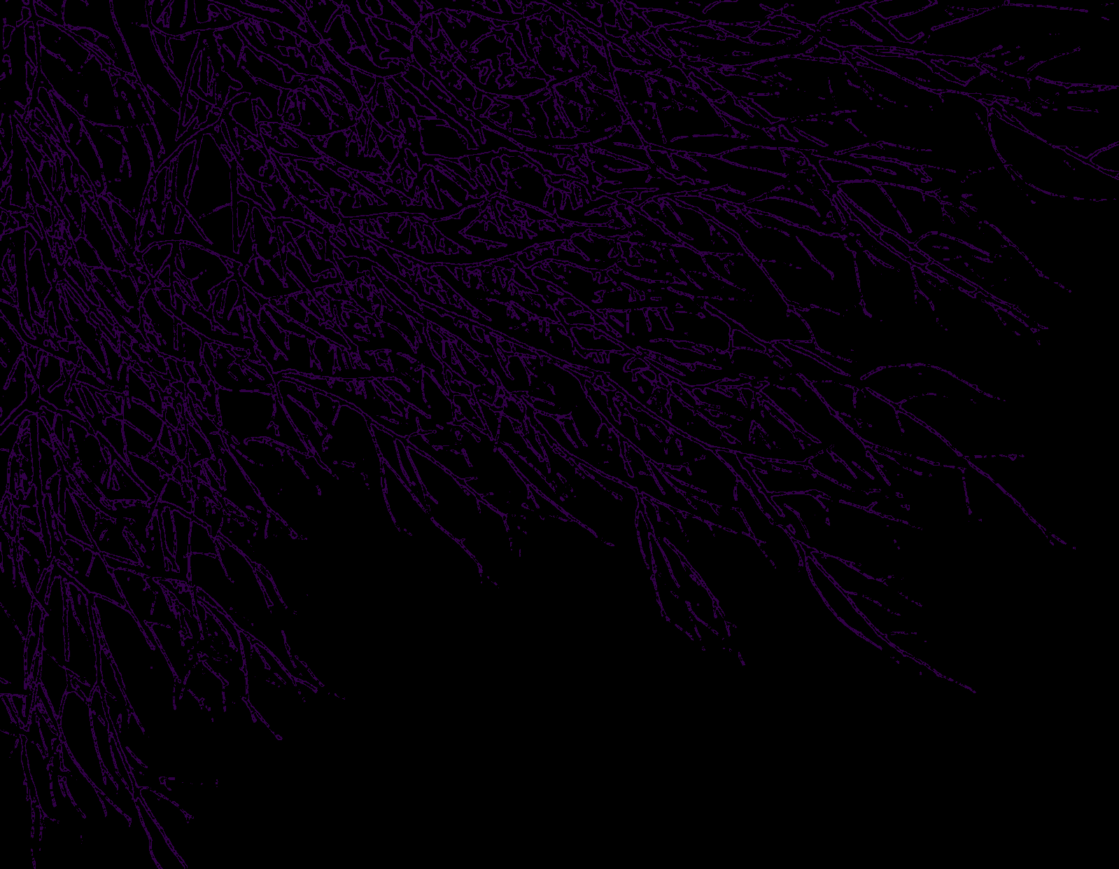 Purple And Black Backgrounds Png - Dark Purple Background - PowerPoint Backgrounds for Free ...