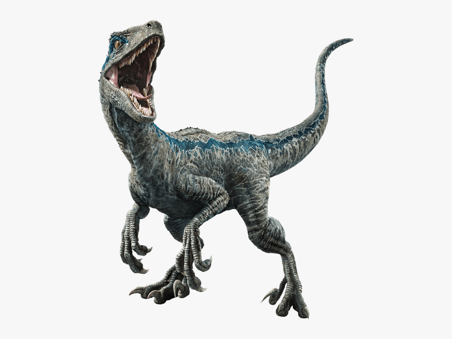Dinosaur Png Jurassic World Jurassic W 1587615 Png Images Pngio Dinosaur png you can download 31 free dinosaur png images. dinosaur png jurassic world jurassic