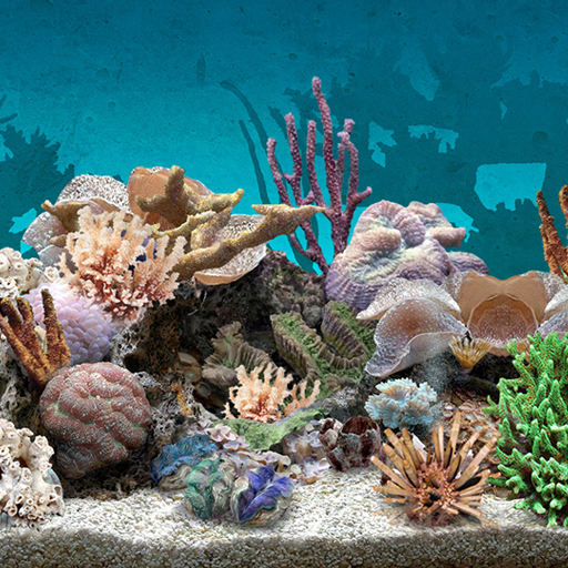 download 3d aquarium live wallpaper on pc mac with appkiwi apk aquarium live png for pc 512 512