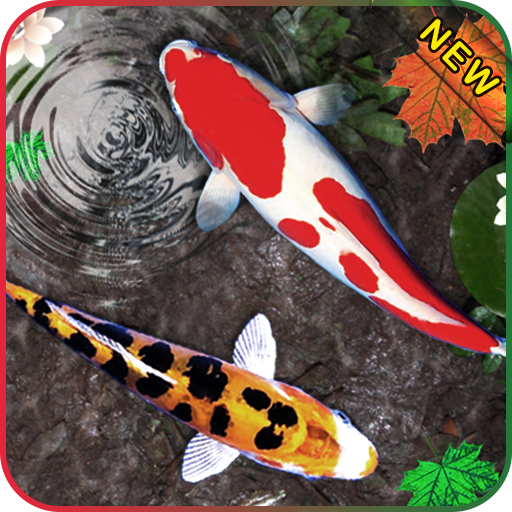 download 3d koi fish wallpaper hd fish live wallpapers free on pc koi live png for pc 512 512