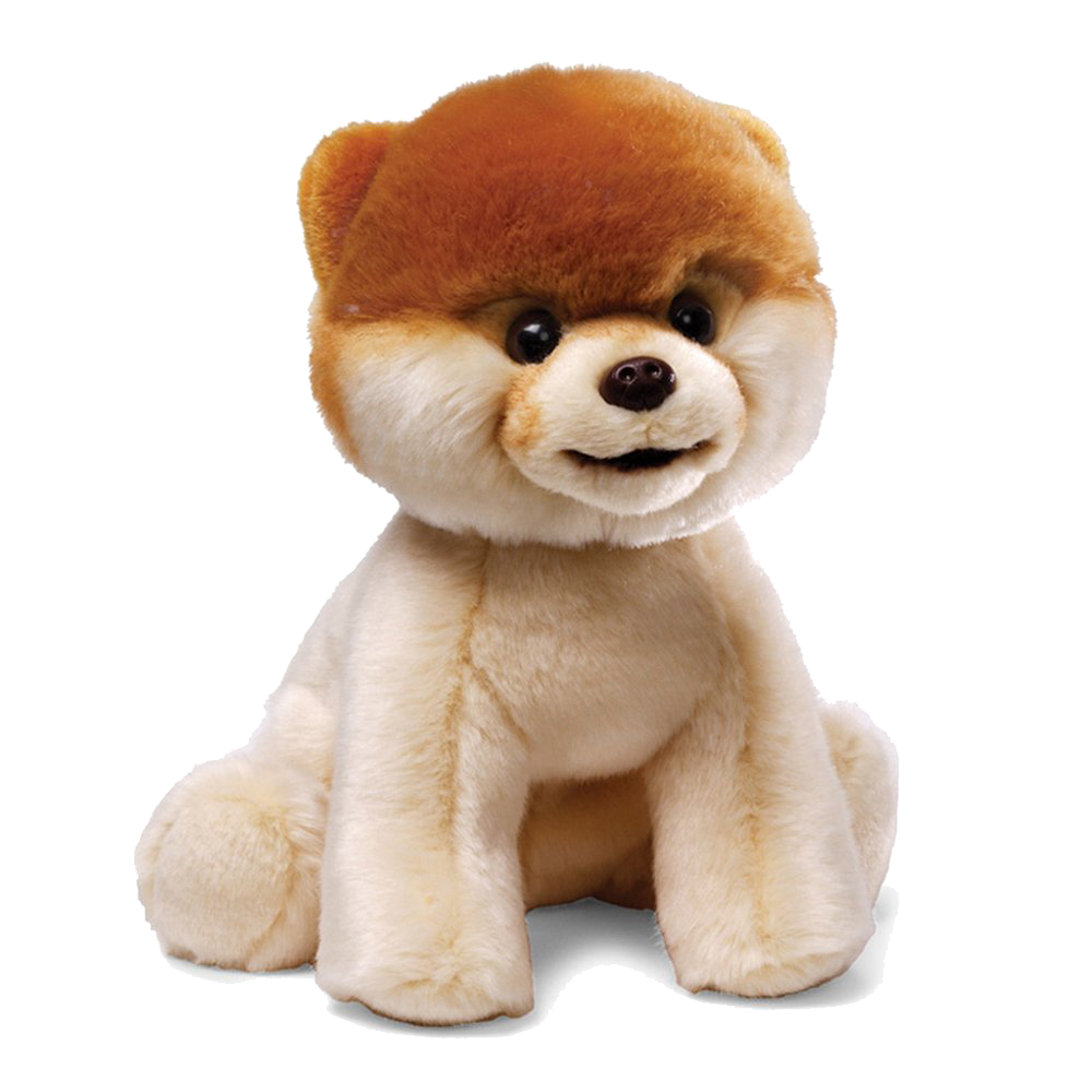 Boo The Dog Png - Download Boo Dog PNG File - Free Transparent PNG Images, Icons and ...