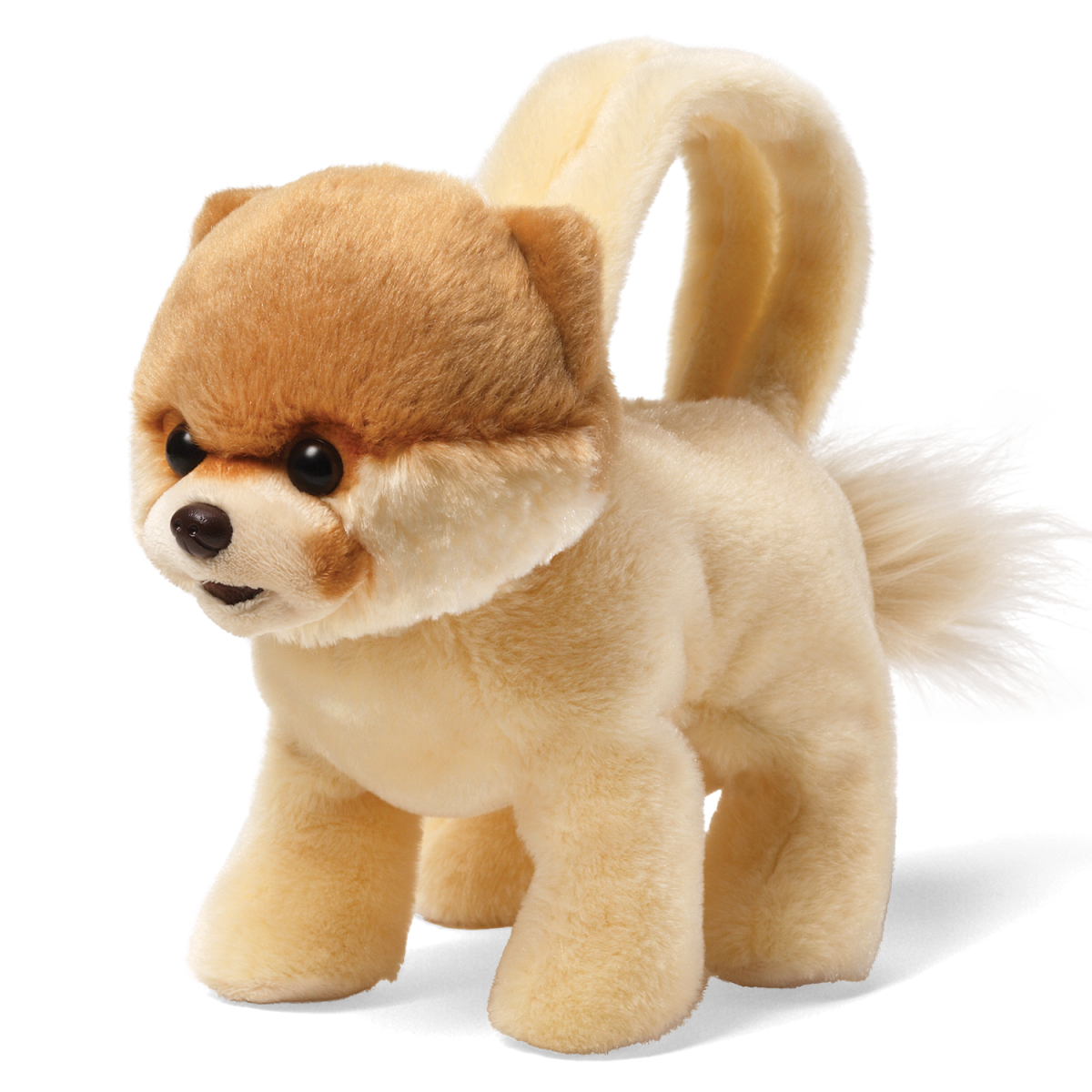 Boo The Dog Png - Download Boo Dog PNG HD - Free Transparent PNG Images, Icons and ...