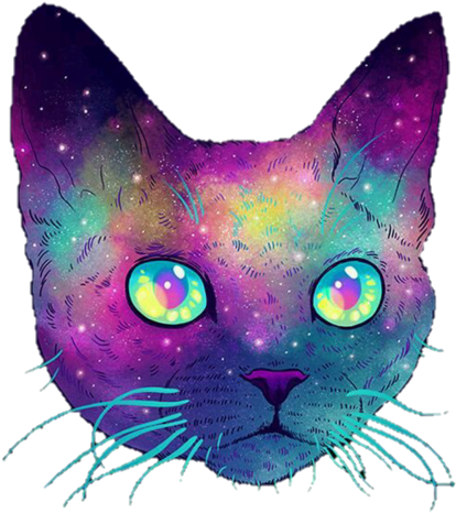 Galaxy Cat Png - Download Cat And Galaxy Image - Galactic Cats PNG Image with No ...