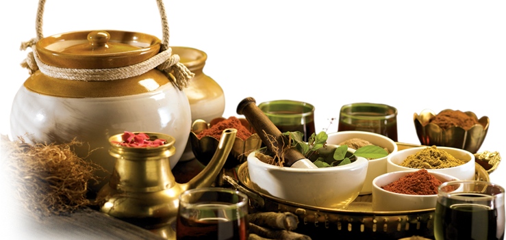 Download Free Png Ayurveda Png Pic Dlp 1488109 Png Images Pngio