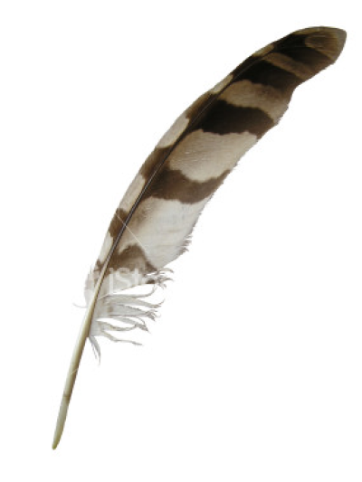 Eagle Feather Png - Download Free png Eagle Feather Png - DLPNG.com