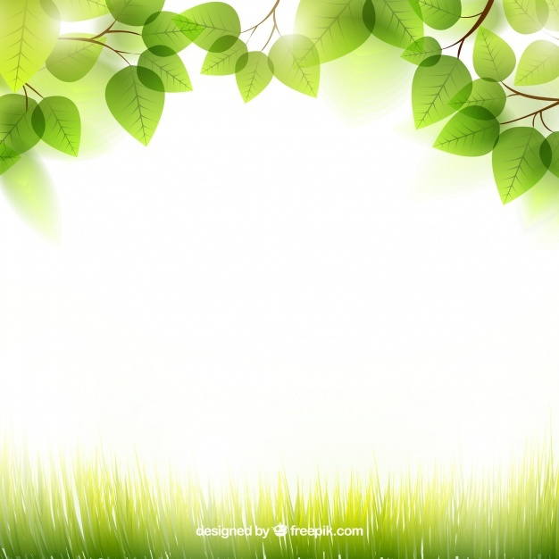 Background Spring Png - Download Free png Free Spring background with leaves SVG DXF EPS ...